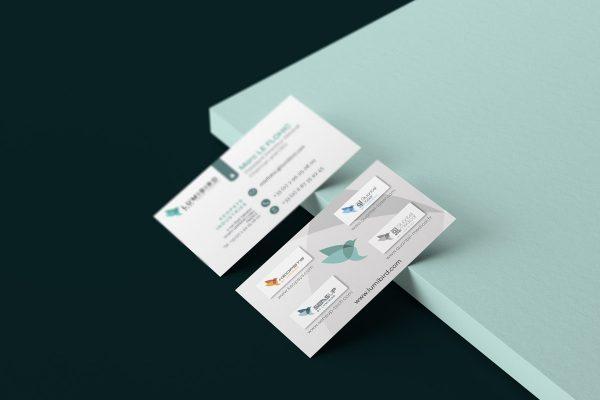 Mockup-card-lmb-mlf-2